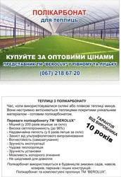 Сотовый поликарбонат Ровно. 4 мм 6 мм 8мм 10мм
