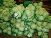 Продам капусту белокочанную. Урожай 2015. Без ГМО и мех. повреждений
