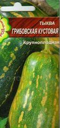 Насіння гарбуза «Грибовського кущового»