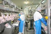 Работа в Польше на птицефабрике